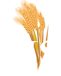 M.S. Diversfied, Fairfax, Minnesota